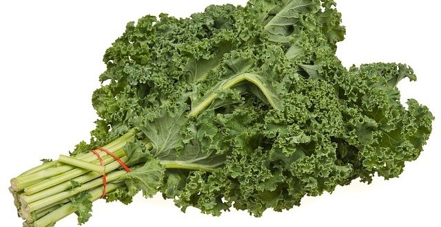 what_are_the_health_benefits_of_kale