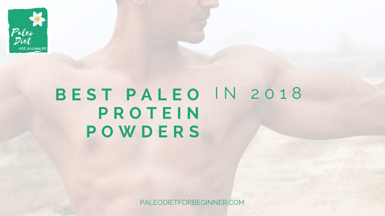 Best-Paleo-Protein-Powder